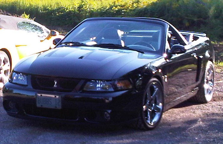 2003 Ford Mustang Svt Cobra Convertible Photo 1