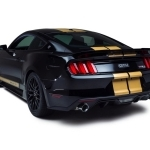 2018 Ford Mustang Shelby GT H