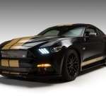2019 Ford Mustang Shelby GT H