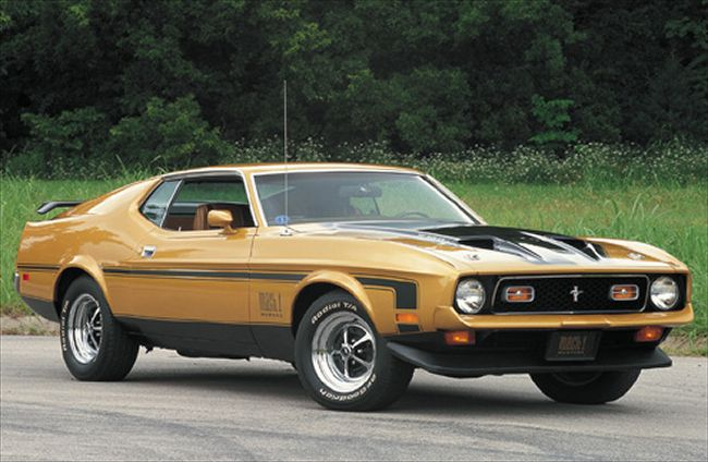 1972 Ford Mustang Mach 1 photo - 1