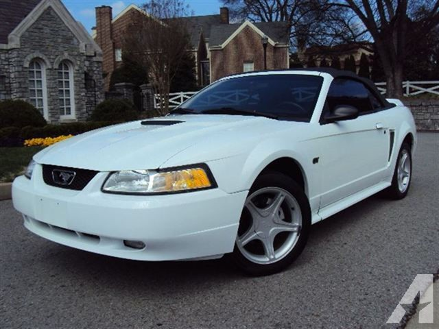 2000 Ford Mustang GT photo - 3