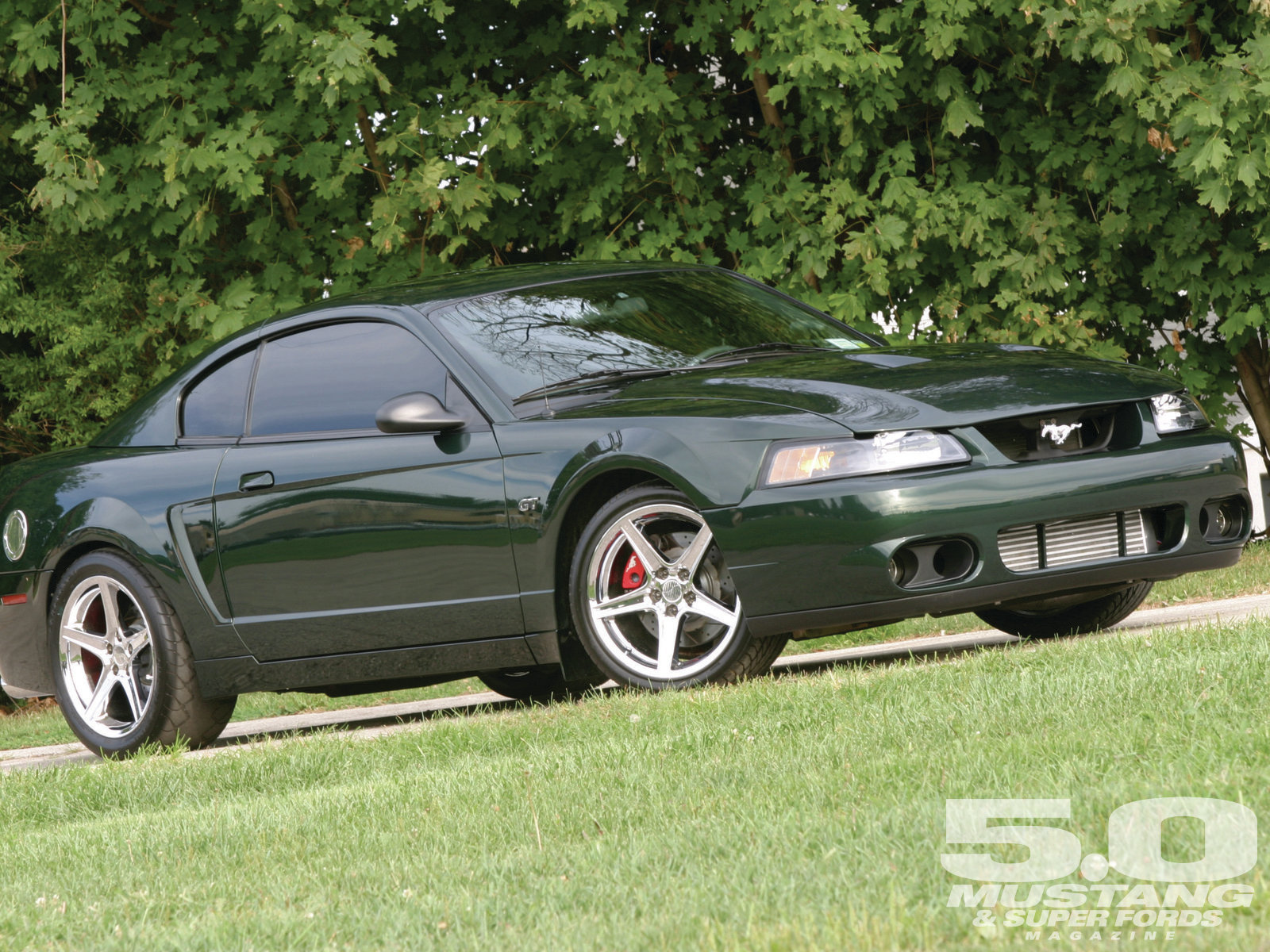2001 Ford Mustang photo - 3