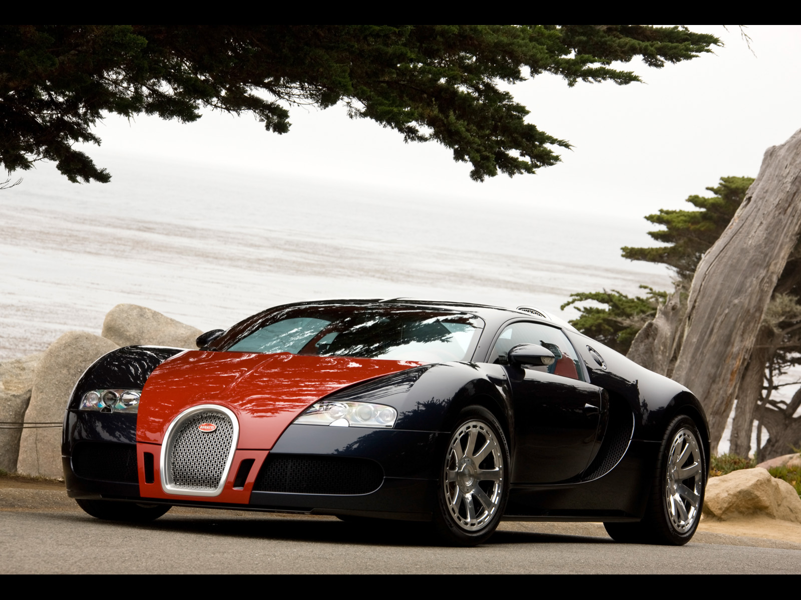 2009 Bugatti Veyron Fbg par Hermes photo - 1
