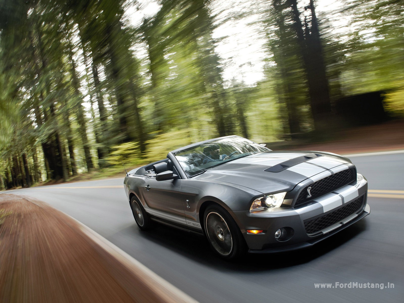2010 Ford Mustang Shelby GT500 Convertible photo - 2