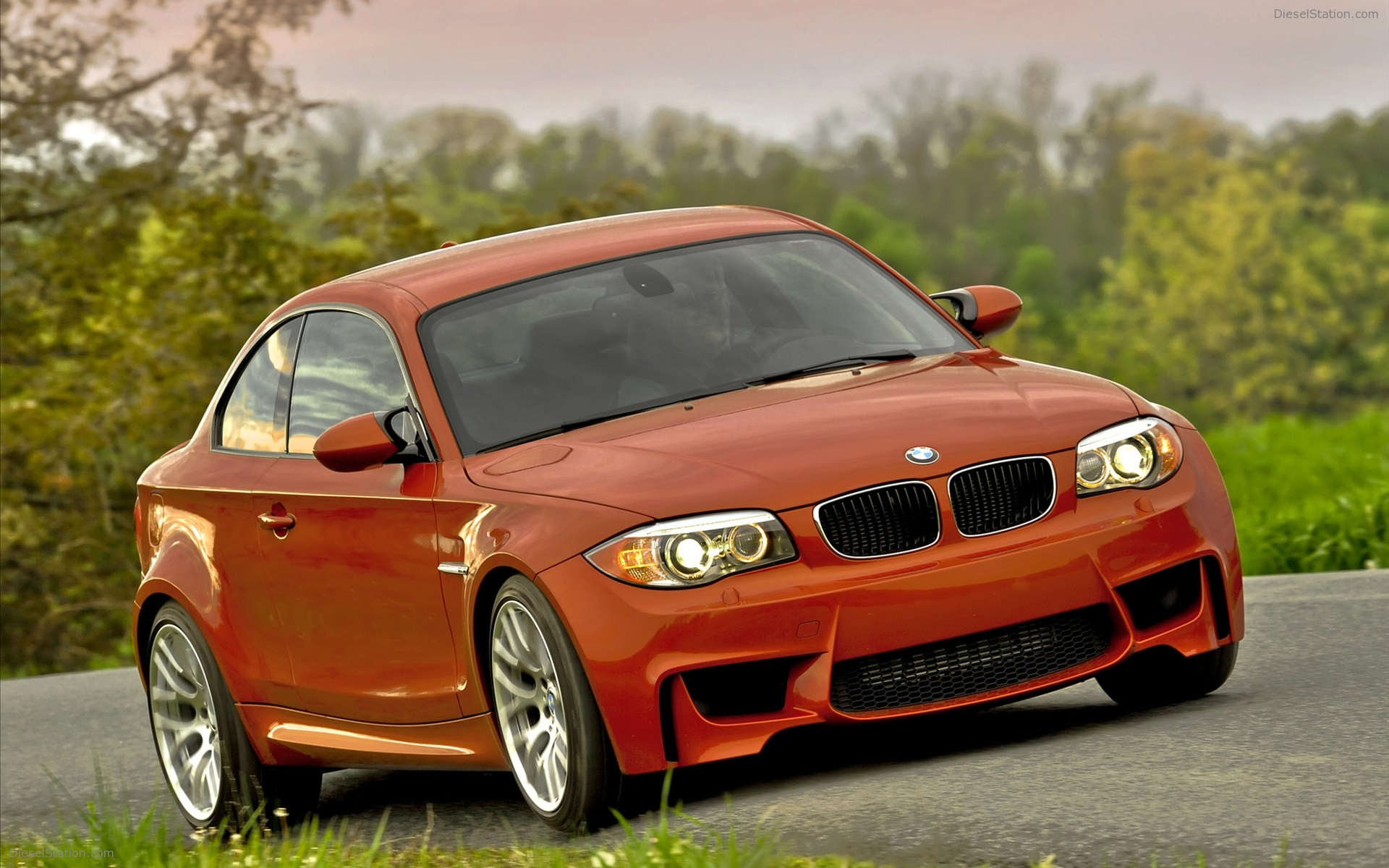 2011 BMW 1 Series M Coupe photo - 3