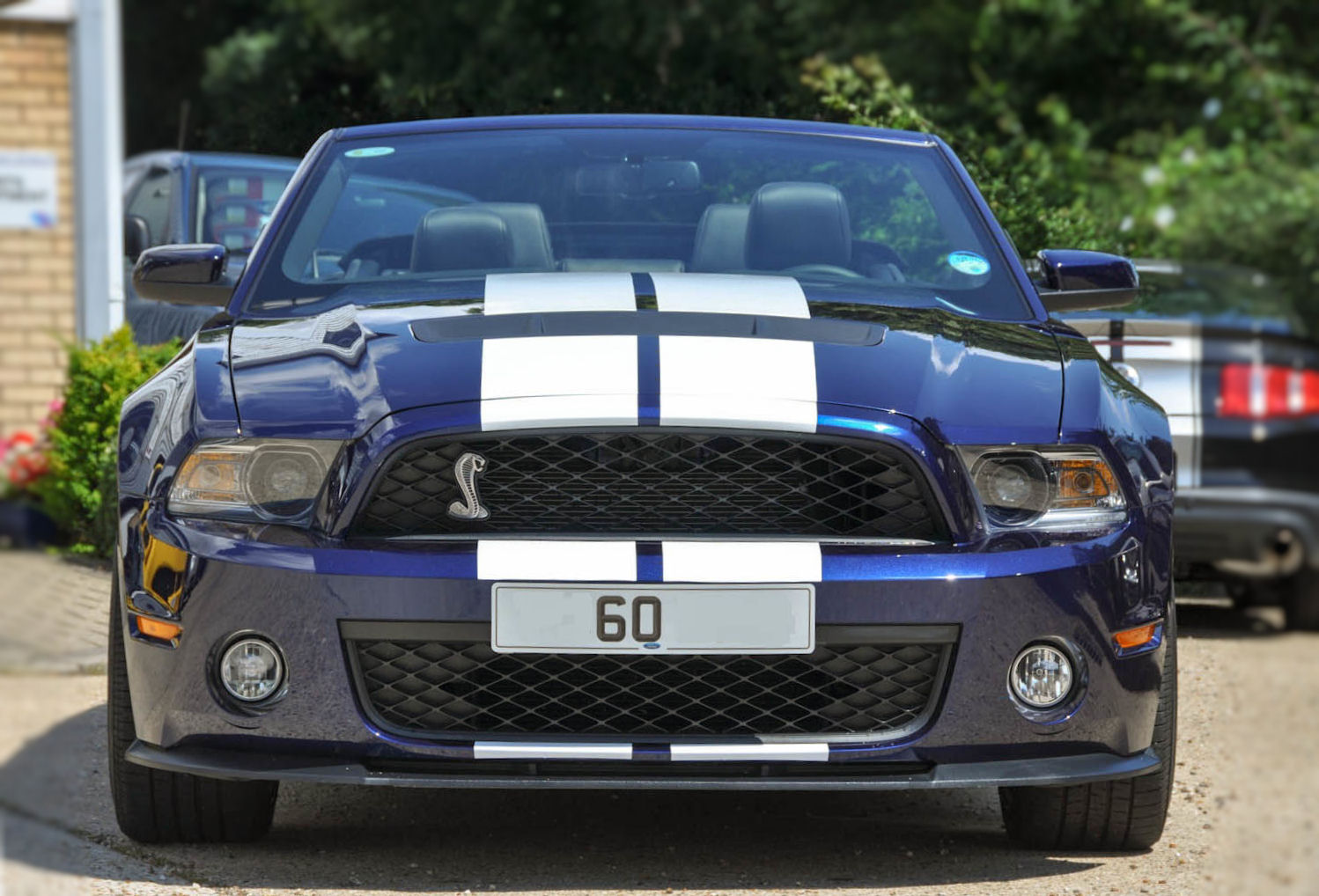 2011 Ford Mustang Shelby GT500 Convertible photo - 2