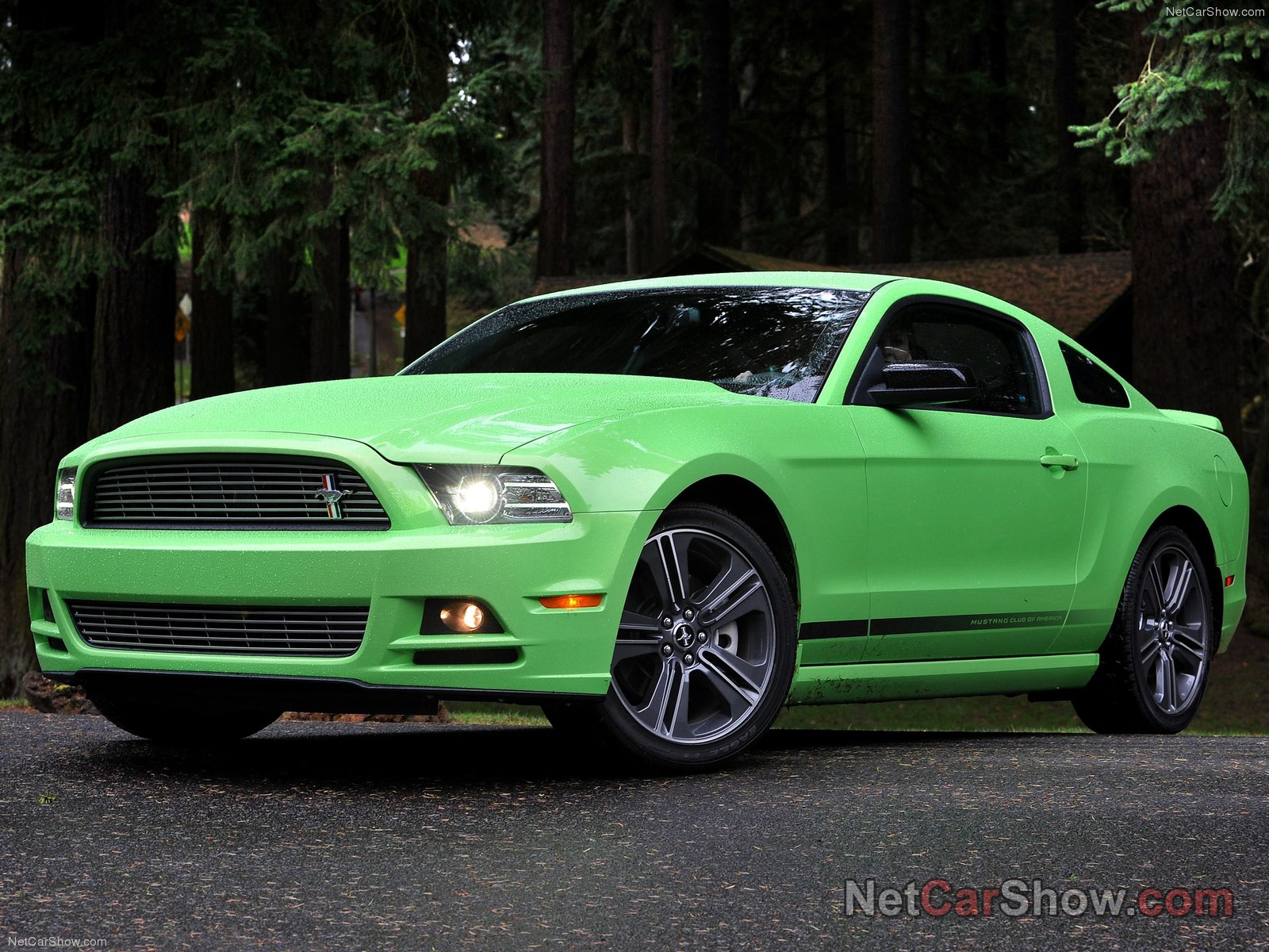2013 Ford Mustang photo - 3