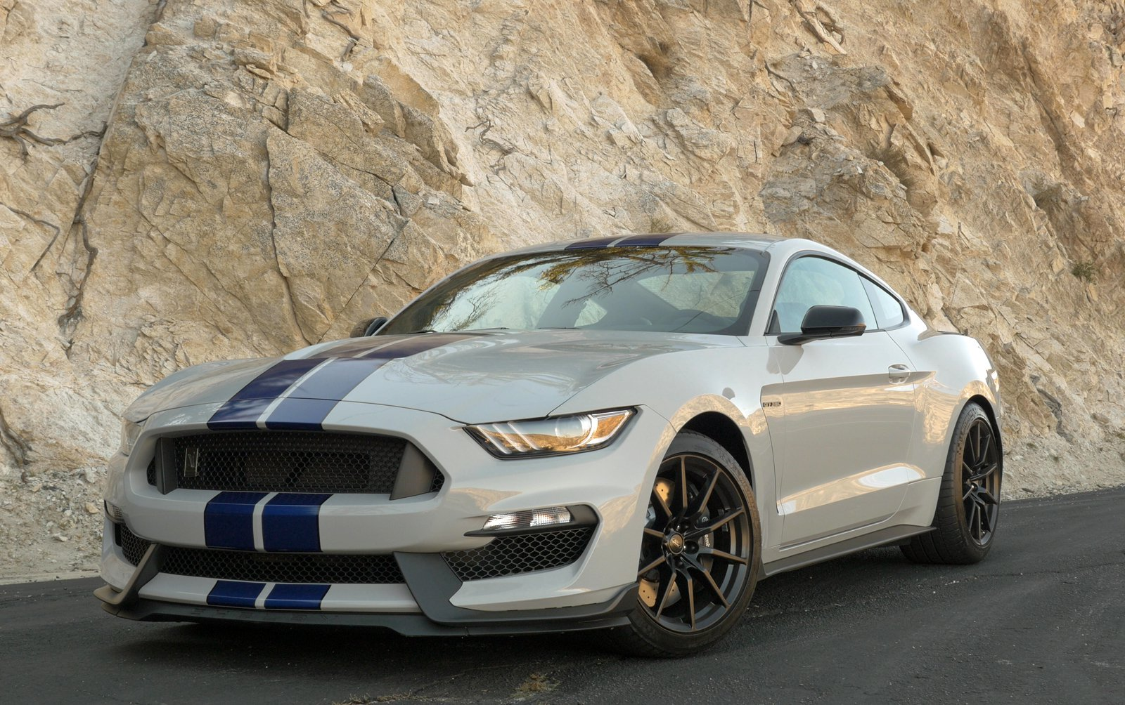 2016 Ford Mustang Shelby GT350 photo - 1