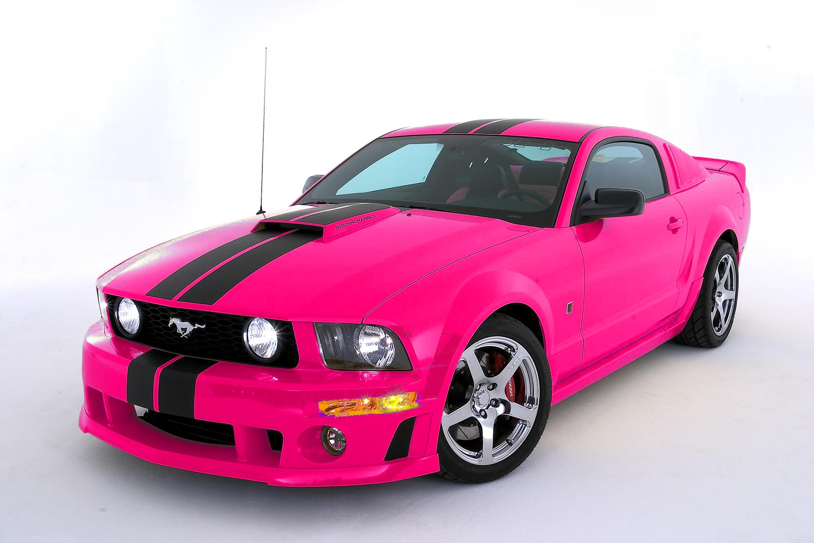 2017 Ford Mustang Warriors In Pink photo - 3