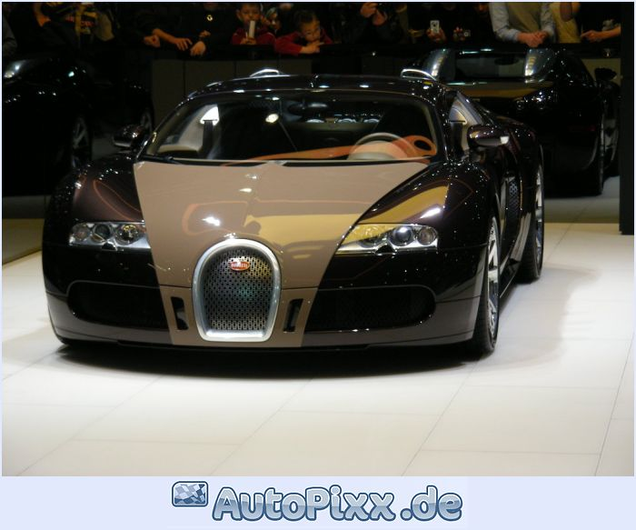 2018 Bugatti Veyron Fbg par Hermes photo - 2