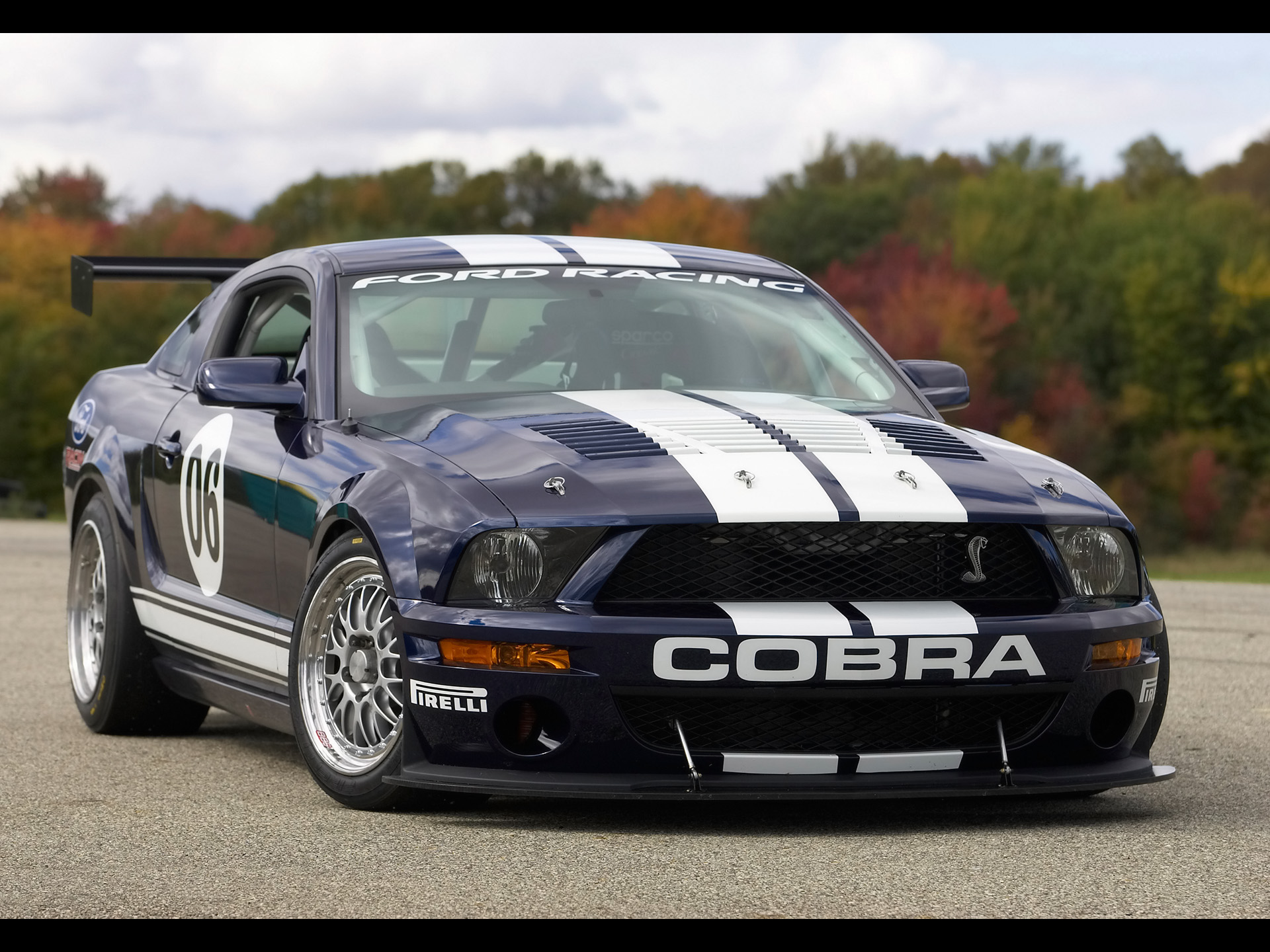 2018 Ford Mustang Cobra Racecar photo - 5