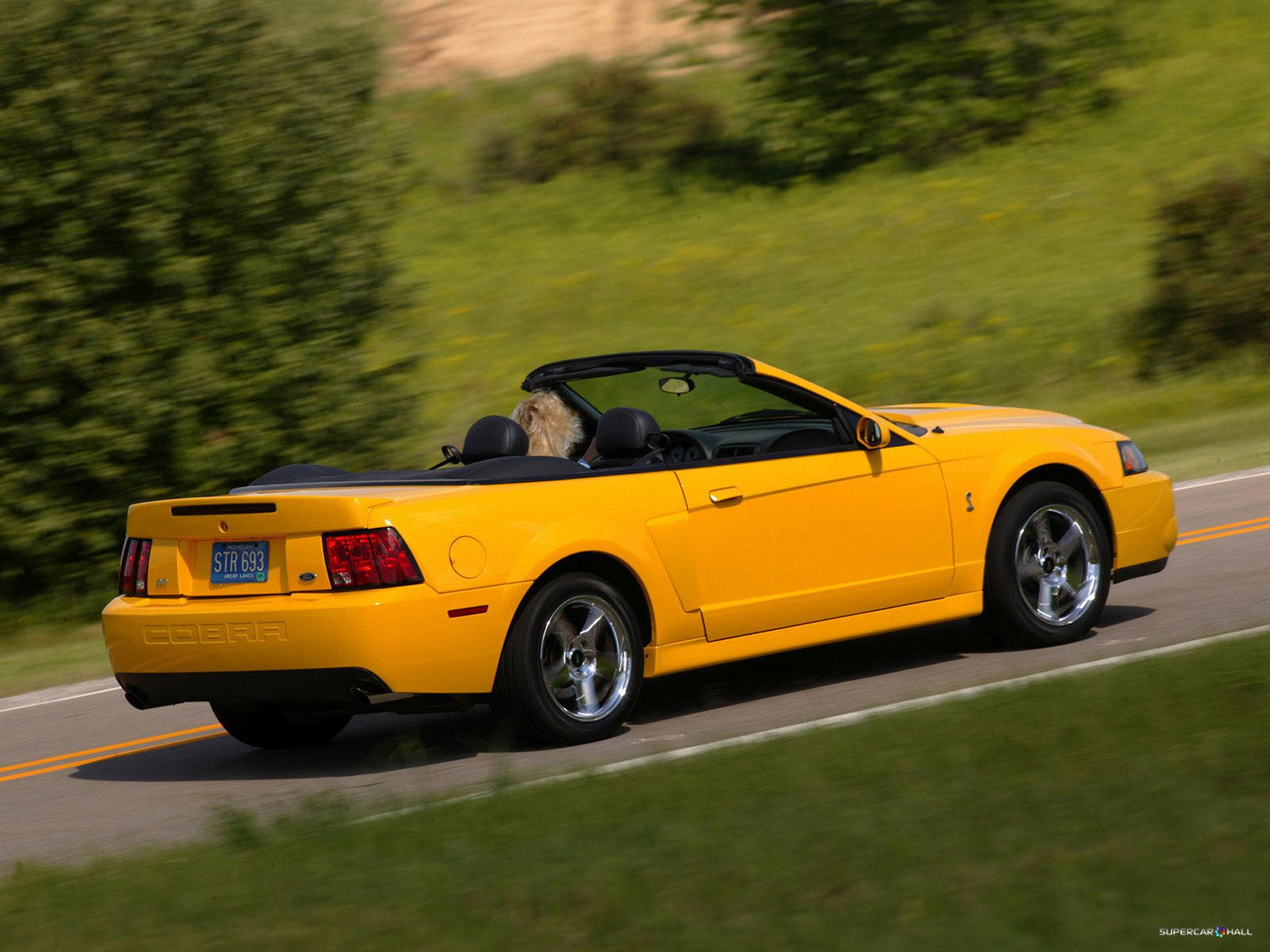 2018 Ford Mustang SVT Cobra Convertible photo - 1