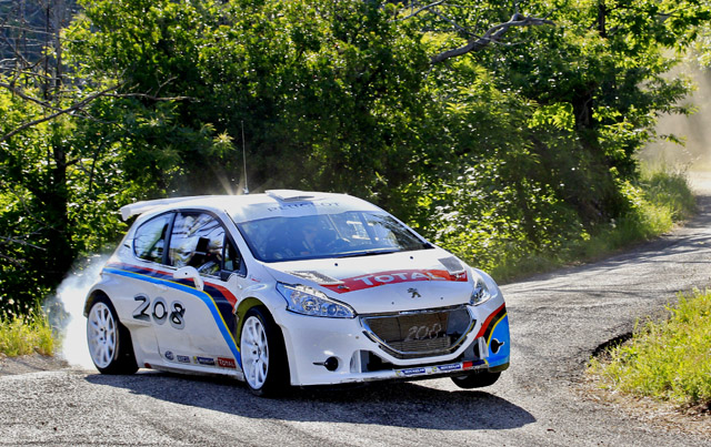 2018 Peugeot 208 R5 Rally car photo - 3