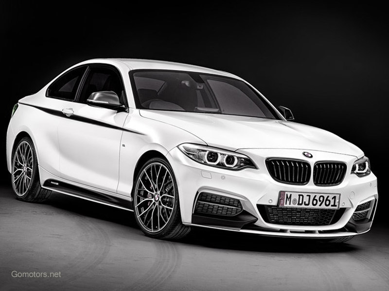 2019 BMW 2 Series Coupe with M Performance Parts photo - 2