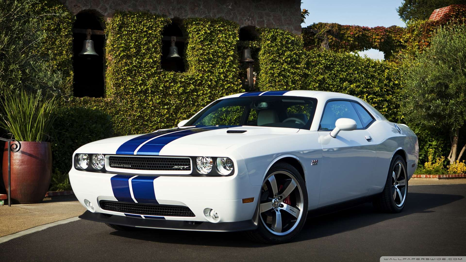 Mustang Decals And Stripes >> 2019 Dodge Challenger RT Redline | Car Photos Catalog 2018