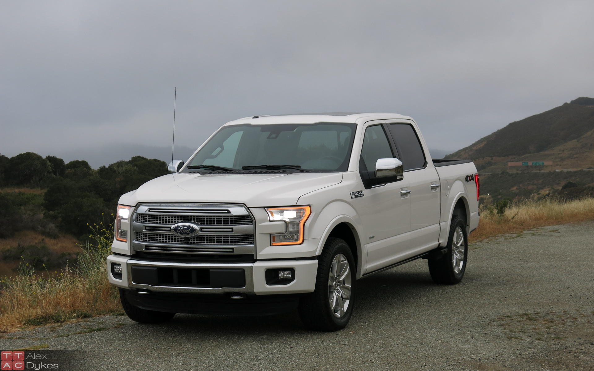2019 Ford F 150 Platinum photo - 6