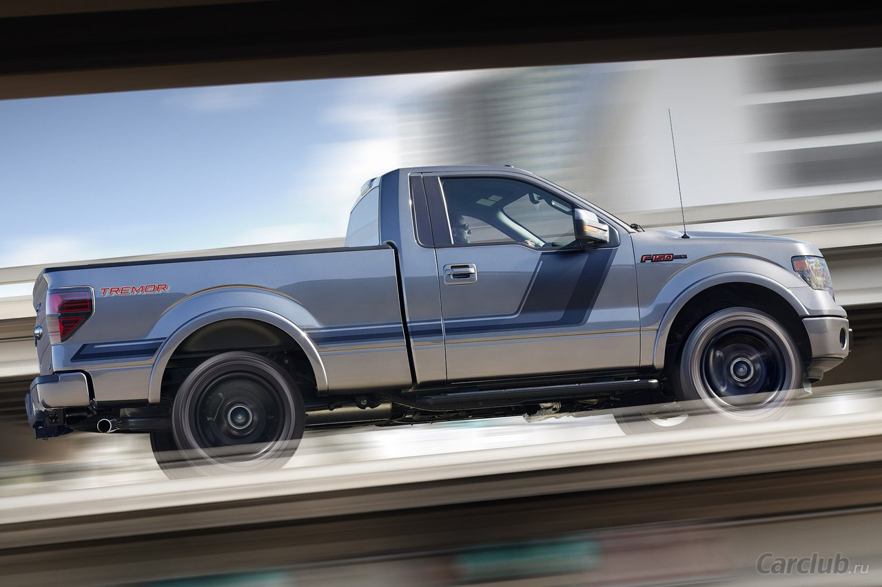 2019 Ford F 150 Tremor photo - 3