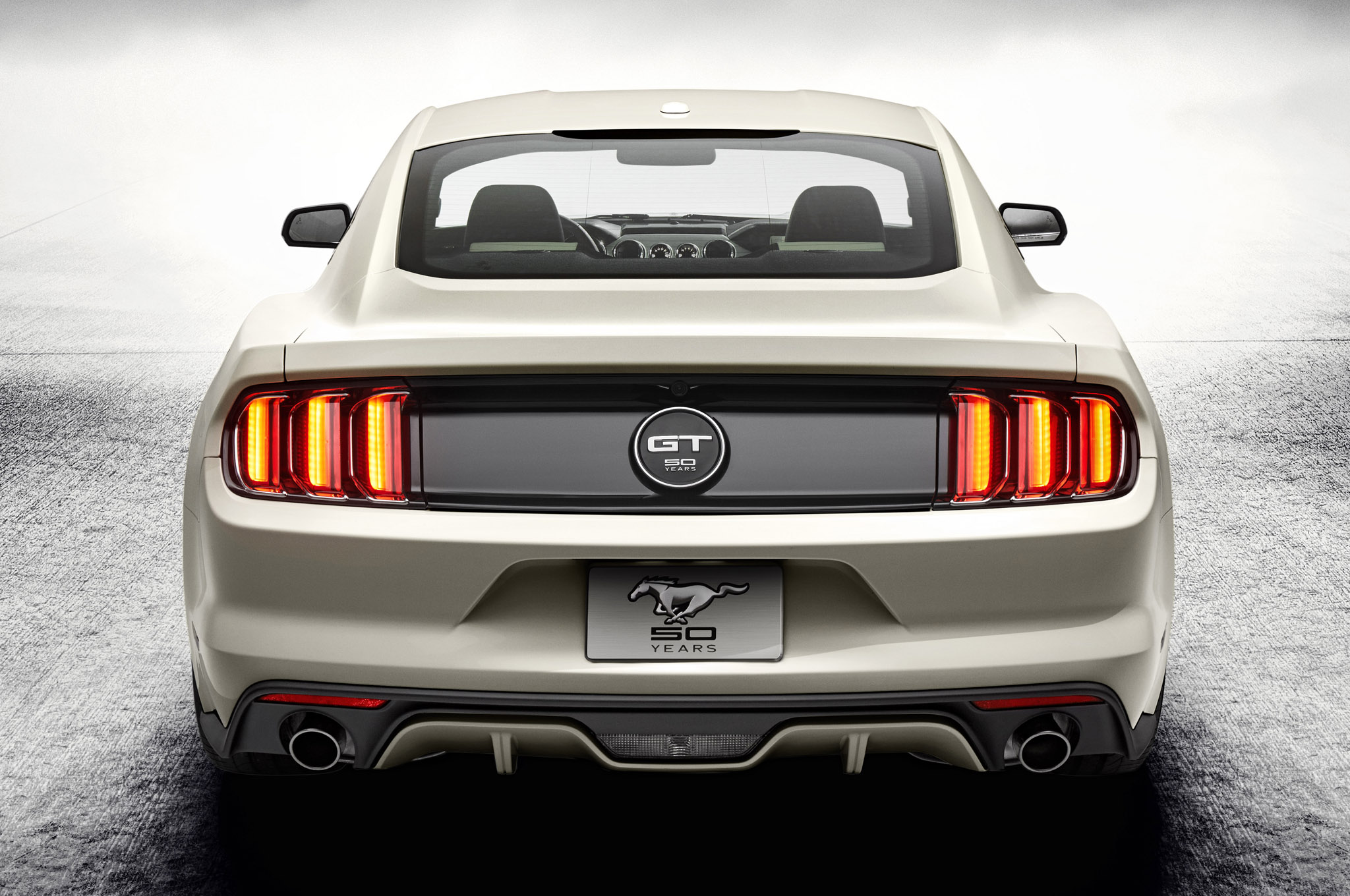 2019 Ford Mustang 50 Year Limited Edition photo - 2