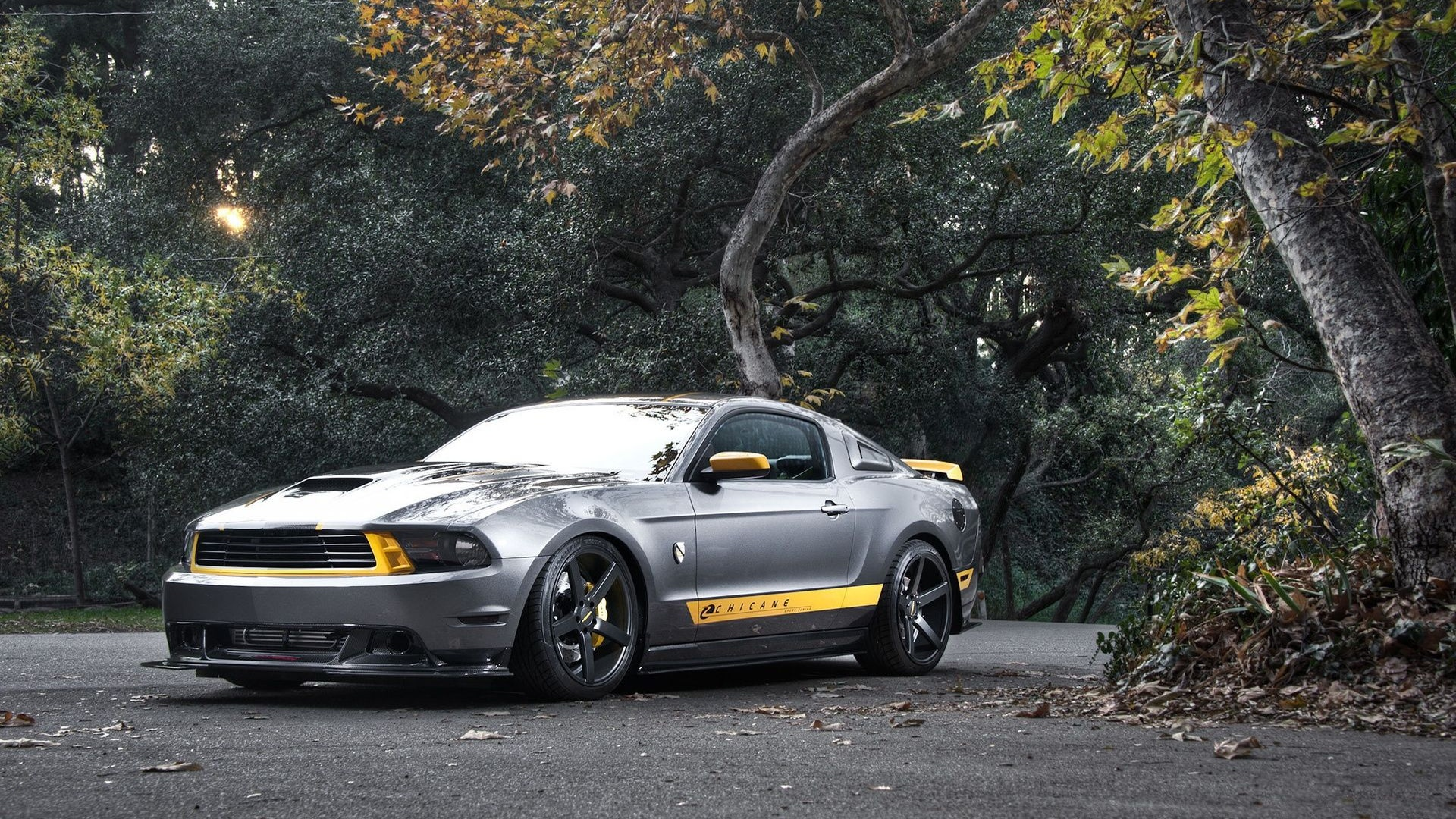 2019 Ford Mustang DUB Edition photo - 5