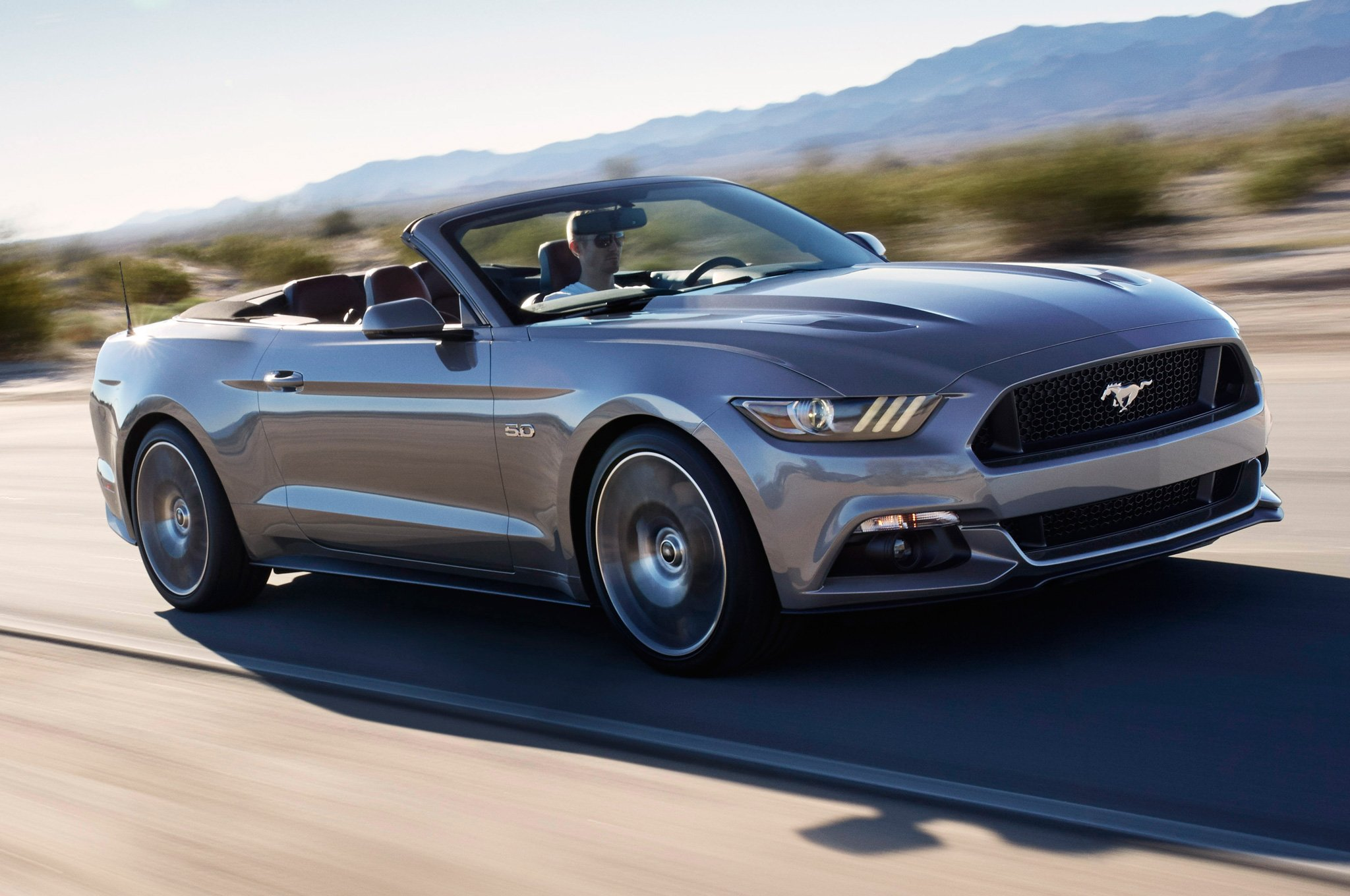 2019 Ford Mustang Shelby GT H photo - 6
