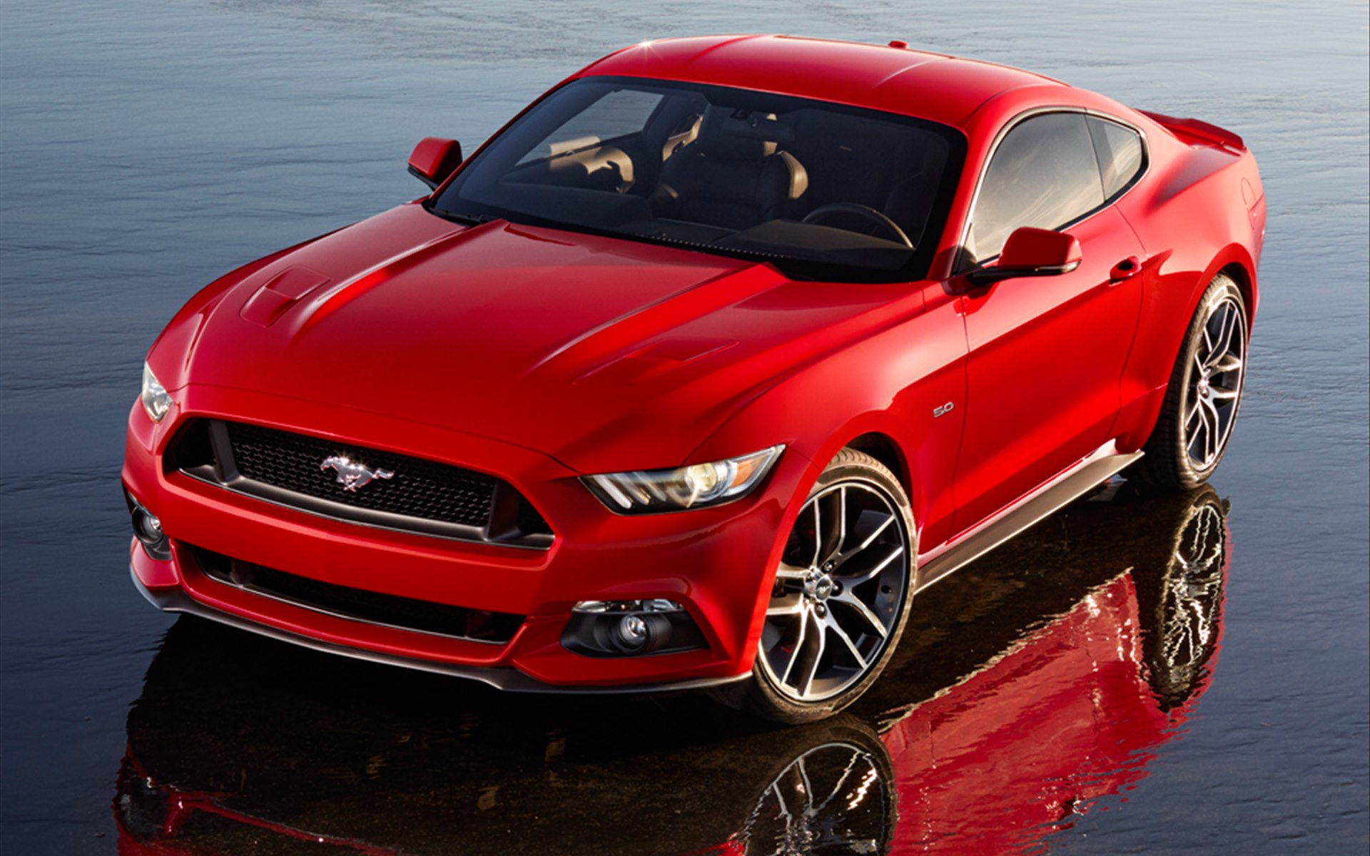 2019 Ford Mustang SVO photo - 3
