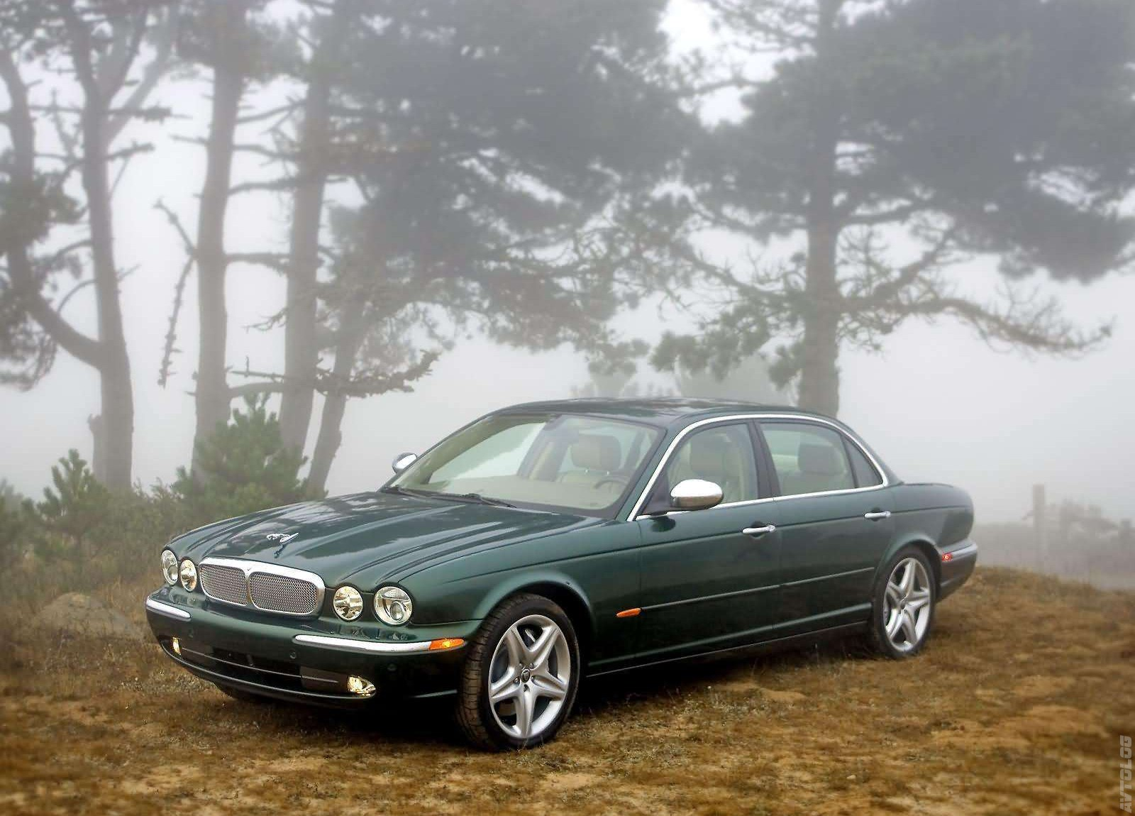 2019 Jaguar XJ Super V8 photo - 2