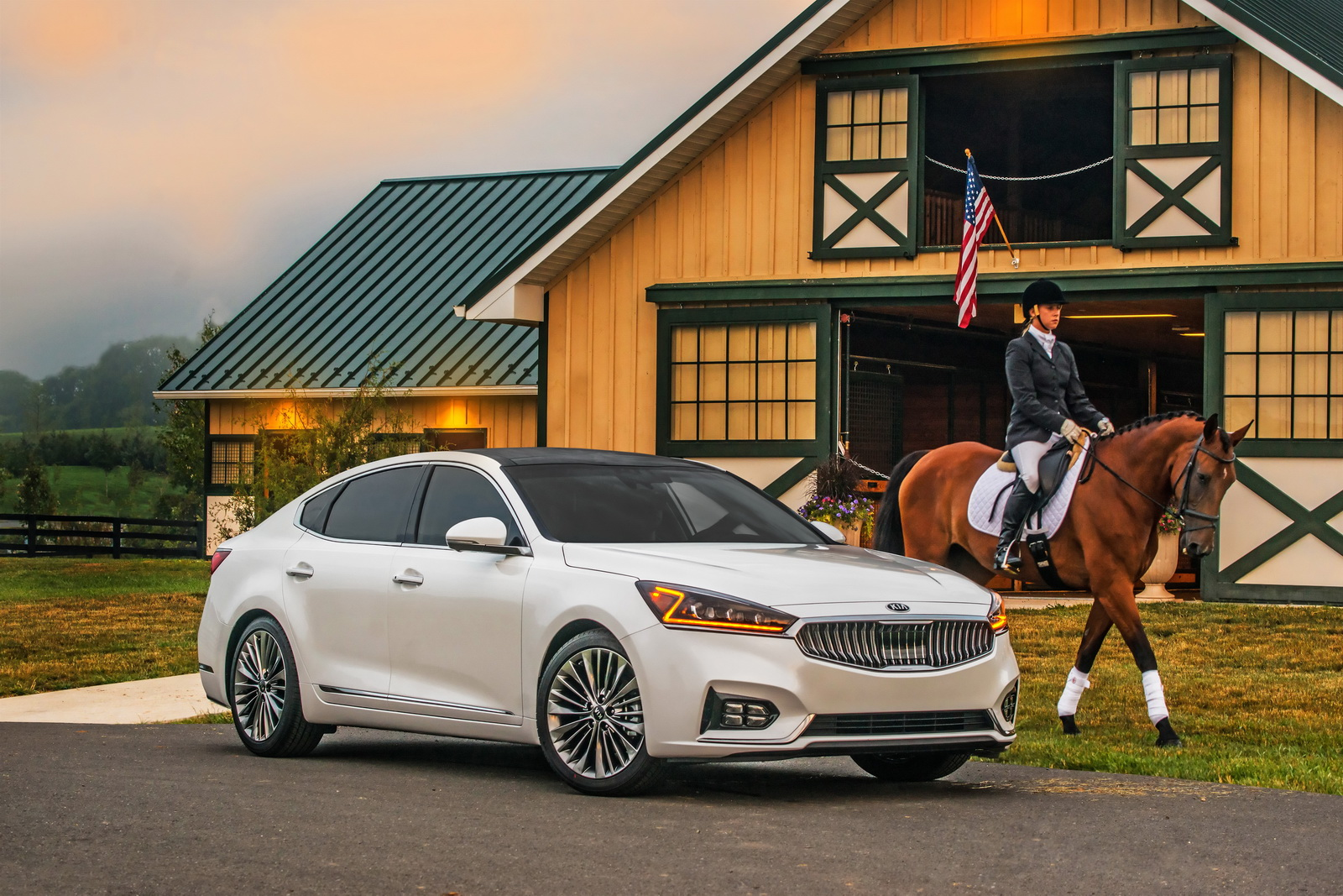 2019 Kia Cadenza photo - 1