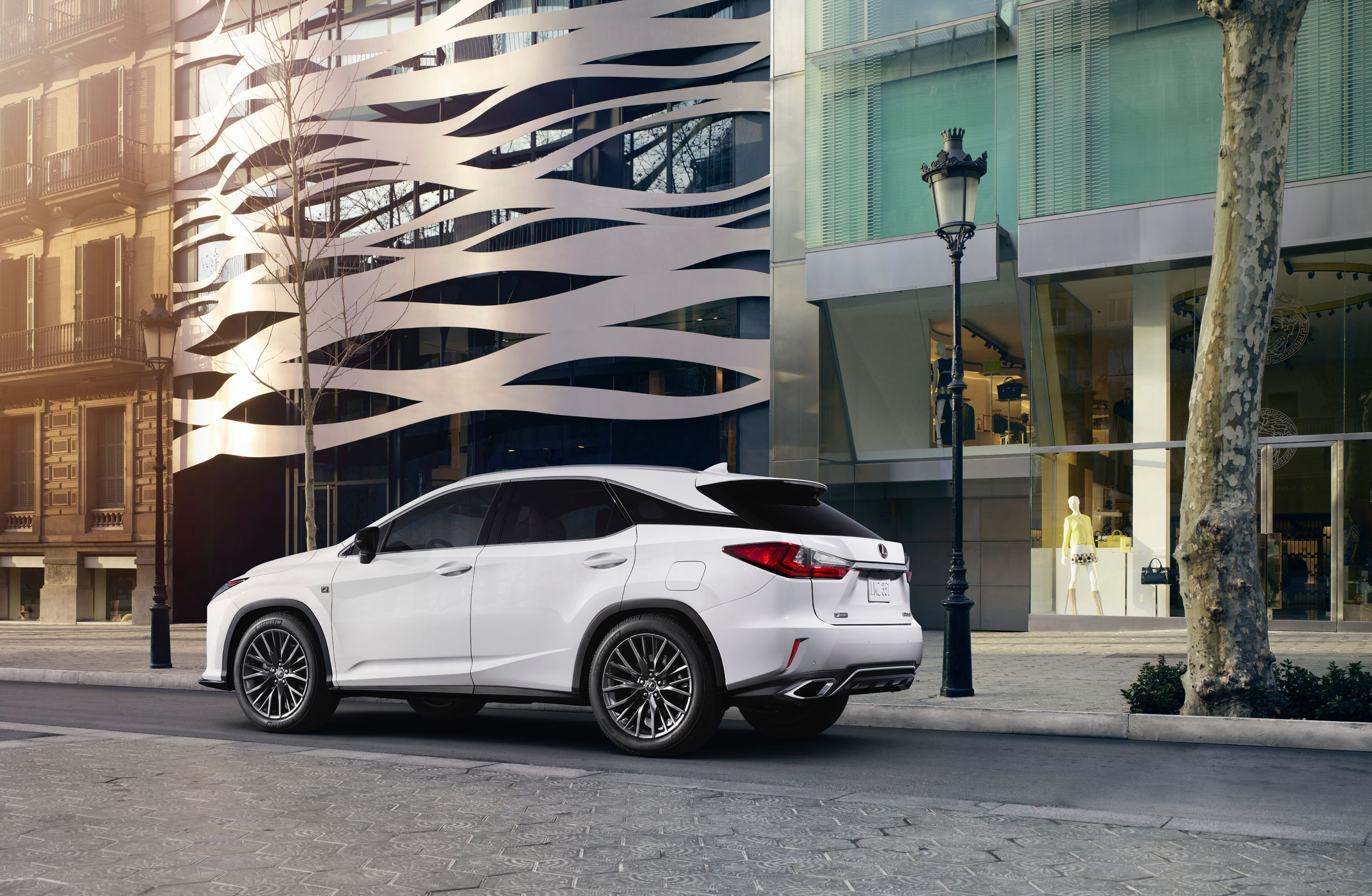 2019 Lexus RX 350 photo - 6