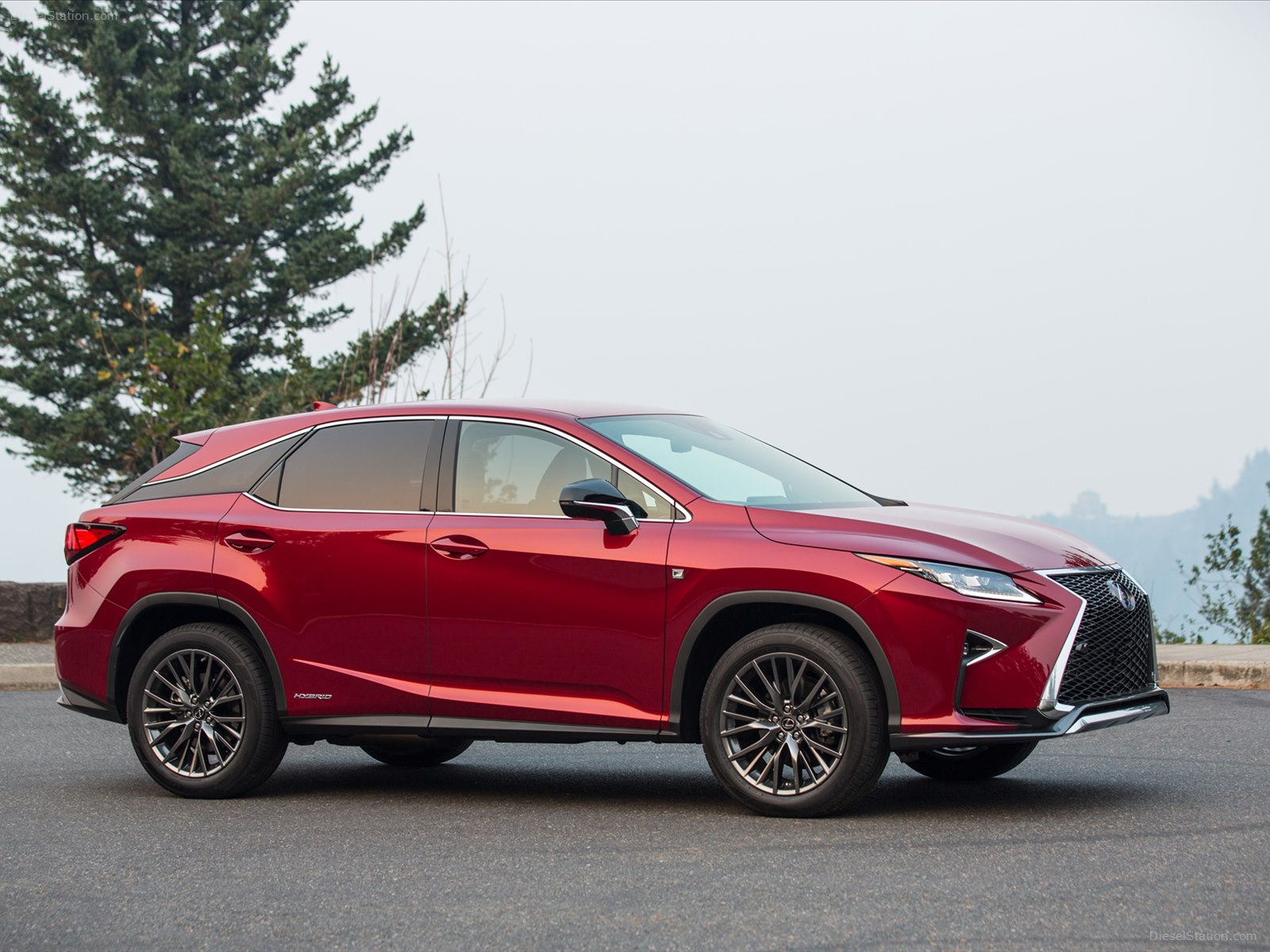 2019 Lexus RX 450h F Sport photo - 4