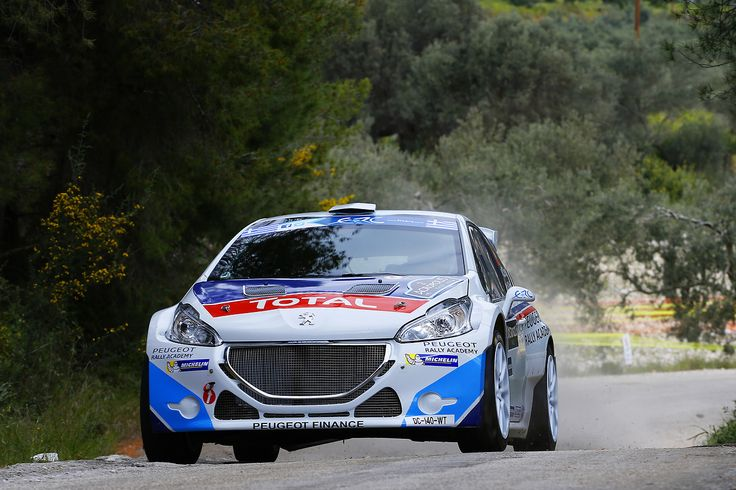 2019 Peugeot 208 R5 Rally car photo - 5