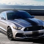2017 Ford Mustang Pony