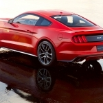 2019 Ford Mustang Pony